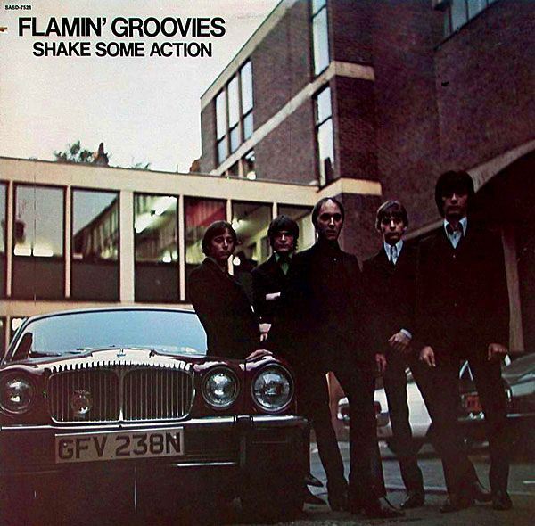 Flamin' Groovies: Shake Some Action